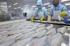 越南查鱼对美、中两大市场的出口活动释放出积极信号