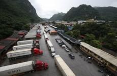 越南农业与农村发展部建议企业暂停将货物运往谅山省边境口岸