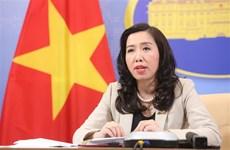 越南努力解决在海外的越南公民回国的需求