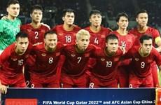 国际足联最新排名:越南队名列东南亚首位