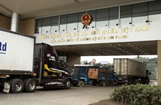 新冠肺炎疫情:为越中两国之间的贸易纾困