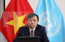 联合国安理会首次讨论新冠肺炎疫情:越南呼吁优先援助受影响的国家