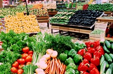 3月份越南对新加坡出口500吨农产品