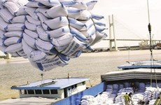 越南政府总理批准恢复大米出口活动