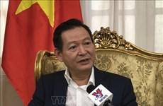 越南驻埃及大使馆协助旅埃越南人度过疫情难关