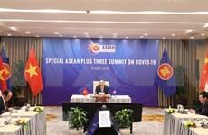 东盟领导人特别会议和东盟与中日韩抗击新冠肺炎疫情领导人特别会议吸引国际媒体关注
