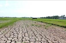 5300亿越盾协助九龙江三角洲8省防治干旱和海水入侵