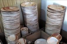 对塑料垃圾说不:槟榔树皮制品受到青睐