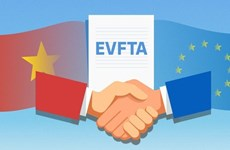 越南加快完成EVFTA相关批准手续 使越南与欧盟自贸协定尽早生效