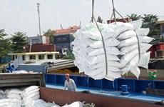 越南粮食协会建议优先为在港口储存的大米清关活动创造便利条件