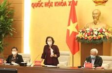 国会主席阮氏金银:尽快完善第十五届国会代表和各级人民议会代表选举提案