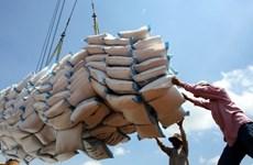 政府总理指导为大米出口活动化解困难