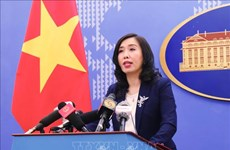 """越南强烈反对所谓的""""三沙市""""的成立"""
