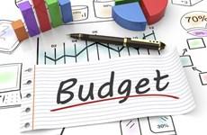 越南预算收入征收部门多措并举力争完成任务