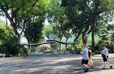 越南旅游业受新冠肺炎疫情影响巨大