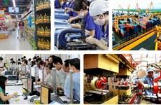亚行专家:致力建立危机后灵活适应的经济体