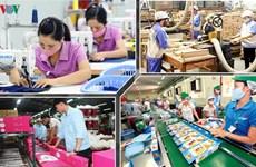 越南企业在疫情中将困难转化为机遇