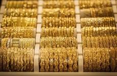 23日国内黄金价格上涨25万越盾