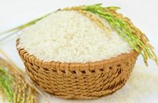 越南调控今后大米出口活动的措施