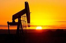 油价下跌对印尼国家预算造成严重的影响