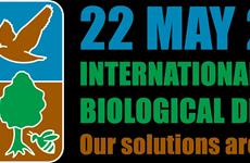 越南举行各项活动响应2020年国际生物多样性日