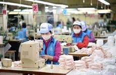 越南有望成为布料口罩生产大国