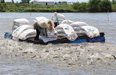 美国商务部公布对越南查鱼和巴沙鱼的第15号反倾销税审查期的结果