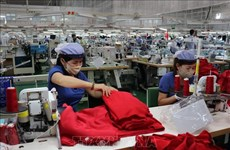 越南企业为全国经济的增长做出了重要的贡献