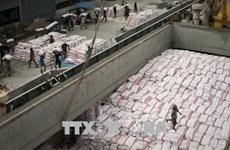 2020年前4月柬埔寨大米出口量猛增