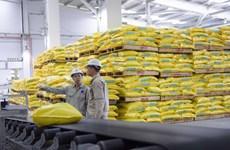 越南化肥行业应主动迎来EVFTA带来的机遇