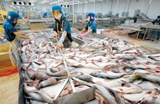 今年前4月越南水产品出口额同比下降10%