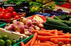 今年4月越南蔬果出口环比增长7.9%