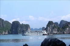广宁省推出新冠肺炎疫情时期的多项刺激旅游需求措施