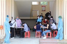 宁平省对从国外返回的81名越南公民进行隔离