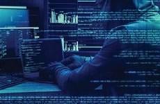 2020年前4个月越南网络攻击案数同比下降51.4%
