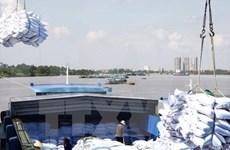 越南大米向中国出口猛增
