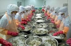 2020年越南虾类出口额有望超过35亿美元