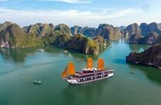 越南旅游业对疫情后创造突破充满信心