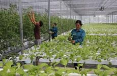 河内市重点推进农业高新技术产业发展