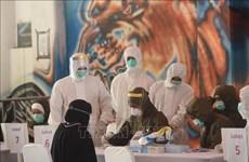 新冠肺炎疫情:印尼新增确诊病例创下单日最大增幅 累计确诊13645例