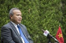武洪南大使:在日越南人处变不惊应对新冠肺炎疫情