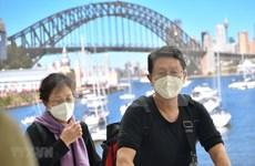 新冠肺炎疫情:在澳越南企业努力度过困难阶段