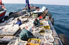 越南努力为渔业解除黄牌警告