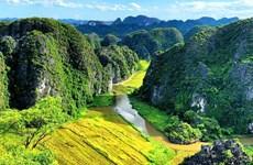 越南旅游总局发起越南旅游视频比赛 激发游客的游兴和灵感
