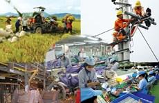 国际组织对越南经济给予积极评价
