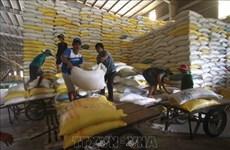 工贸部将严管各国际口岸大米出口活动