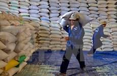 越南对中国的大米出口价格猛增