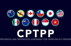 泰国为加入CPTPP谈判进程做好准备