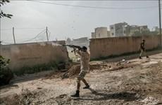联合国安理会就利比亚形势召开视频会议 越南呼吁严格遵守人道主义停火令