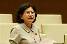越南第十四届国会第九次会议:讨论试点组织岘港市城市政府模式的决议草案